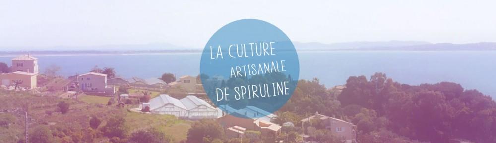 Culture artisanale de spiruline chez Spiruline de Provence