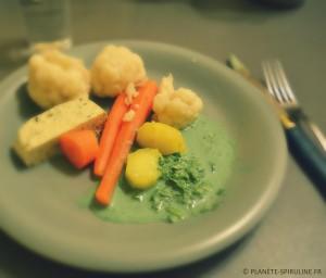sauce yaourt et spiruline