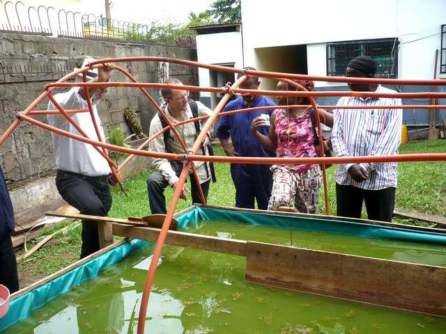 Jean-Bernard à l'inspection d'un bassin de spiruline à Yaoundé