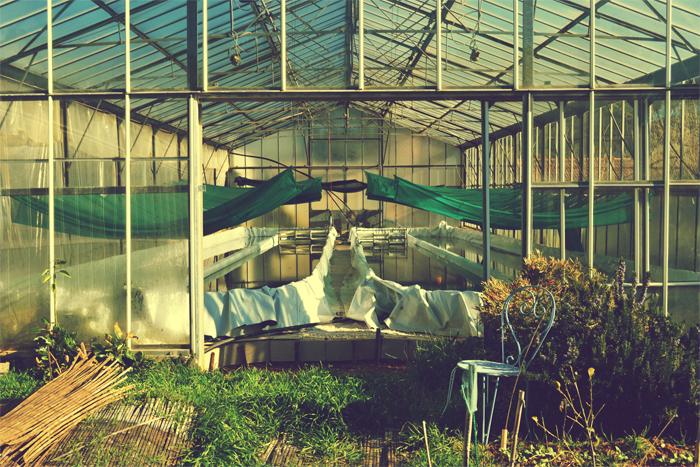 Sous les serres de Carqueiranne : les bassins de spiruline