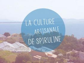 Culture Artisanale Spiruline