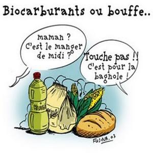 biocarburant manger ou conduire il faut choisir