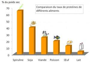 rendement protéines spiruline