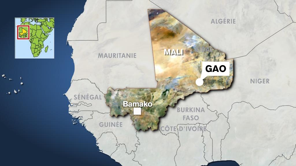 soutien ferme spiruline Mali Gao