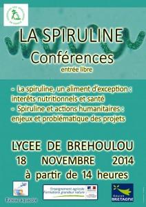 Affiche Colloque Brehoulou 2014