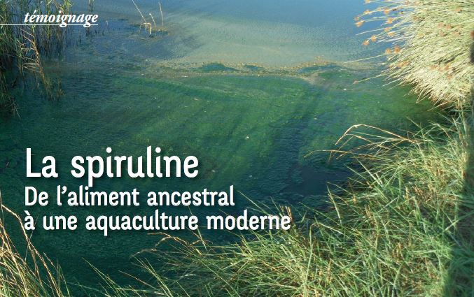 Article Spiruline Nature&Progrès