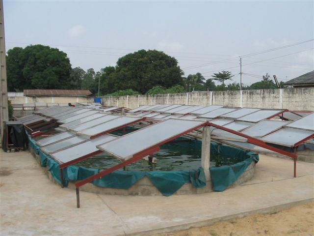 Ferme de Pahou - Bénin