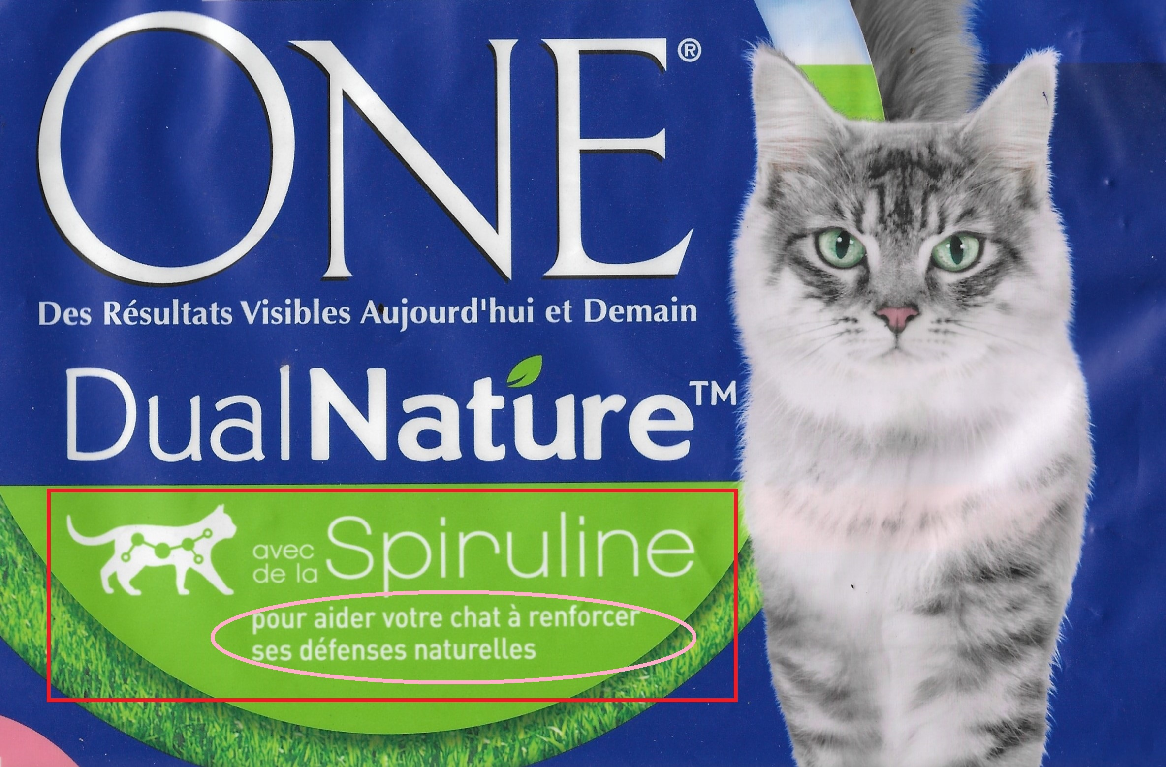 chat purina spiruline modif
