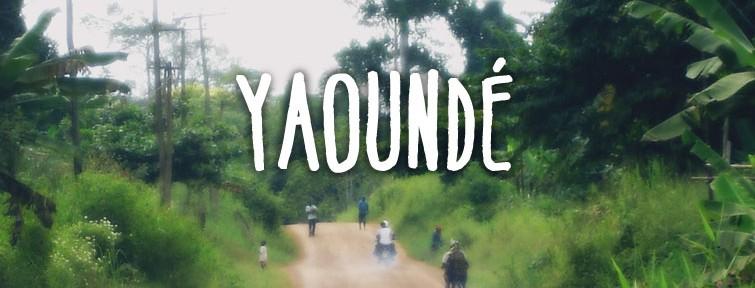 Route de terre au Cameroun